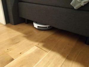 Meet het grootste gemak schiet hij ook onder het bed door | Huisvanvandaag.nl